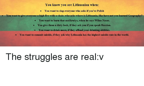 You Know You Are Lithuanian When You Want To Slap Everyone Who - Where is lithuania