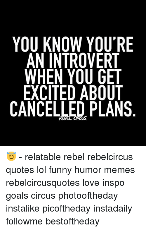 You Know You Re An Introvert When You Get Excited About Cancelled