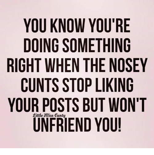 Memes, 🤖, and Friend: YOU KNOW YOU'RE  DOING SOMETHING  RIGHT WHEN THE NOSEY  CUNTS STOP LIKING  YOUR POSTS BUT WON'T  UN FRIEND YOU!