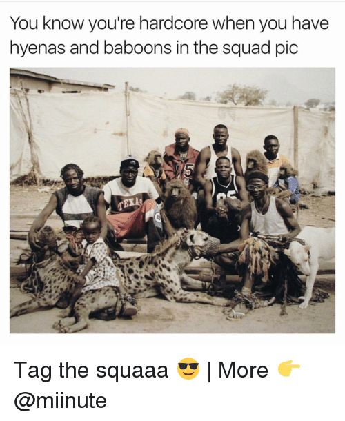 Funny, Hyena, and Hardcore: You know you're hardcore when you have  hyenas and baboons in the squad pic  TEXAo Tag the squaaa 😎 | More 👉 @miinute