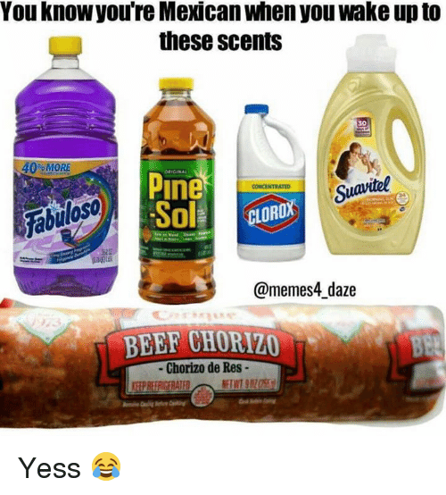 Beef, Memes, and Mexican: You know you're Mexican when you wake up to  these scents  30  % MORE  Pine  Suavitel  Fabulos  @memes4_daze  BEEF CHORIZO  - Chorizo de Res- Yess 😂