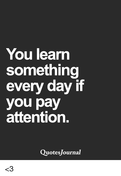You Learn Something Every Day If You Pay Attention Quotes Journal 3