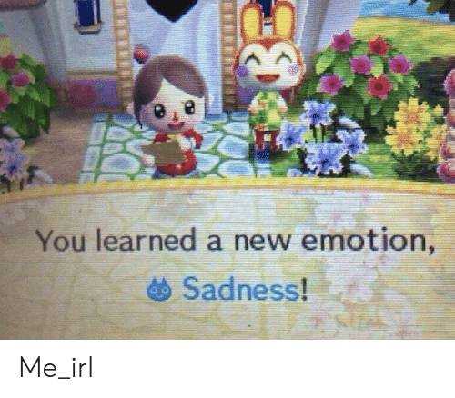 Irl, Me IRL, and Sadness: You learned a new emotion,  Sadness! Me_irl