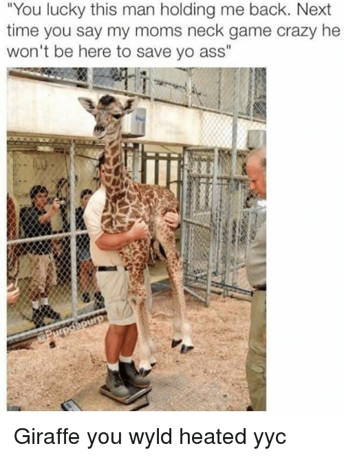 """Memes, Giraffe, and Heat: """"You lucky this man holding me back. Next  time you say my moms neck game crazy he  won't be here to save yo ass"""" Giraffe you wyld heated yyc"""