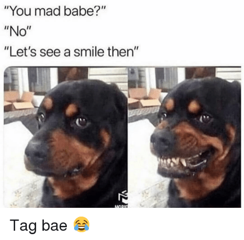 "Bae, Funny, and Smile: ""You mad babe?""  ""No""  ""Let's see a smile then""  MORt Tag bae 😂"