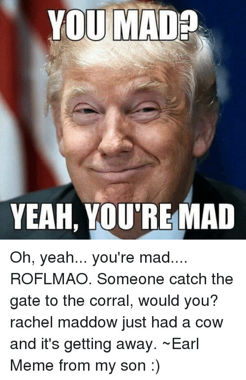 you mad yeah youre mad oh yeah youre mad roflmao 6681928 you mad yeah you're mad oh yeah you're mad roflmao someone catch the