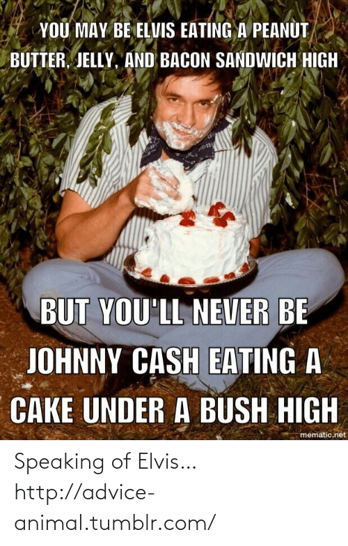 You May Be Elvis Eating A Peanut Butter Jelly And Bacon Sandwich High But You Ll Never Be Johnny Cash Eating A Cake Under A Bush High Mematicnet Speaking Of Elvis Httpadvice Animaltumblrcom Advice