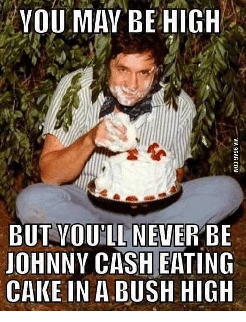 YOU MAY BE HIGH BUT YOULL NEVER BE JOHNNY CASH EATING CAKE IN a BUSH ...