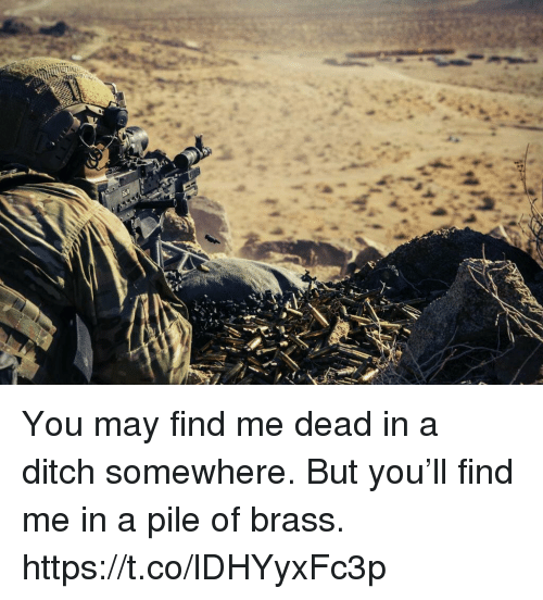 Memes, 🤖, and Brass: You may find me dead in a ditch somewhere. But you'll find me in a pile of brass. https://t.co/lDHYyxFc3p