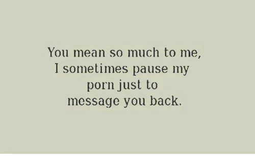 You Mean So Much To Me I Sometimes Pause My Porn Just To Message You Back Meme On Me Me
