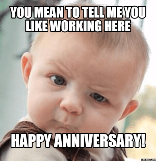 you mean to tell you like working here happy anniversary 16150608 you mean to tell you like working here happy anniversary