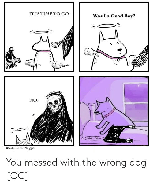 Dog, You, and  Wrong: You messed with the wrong dog [OC]