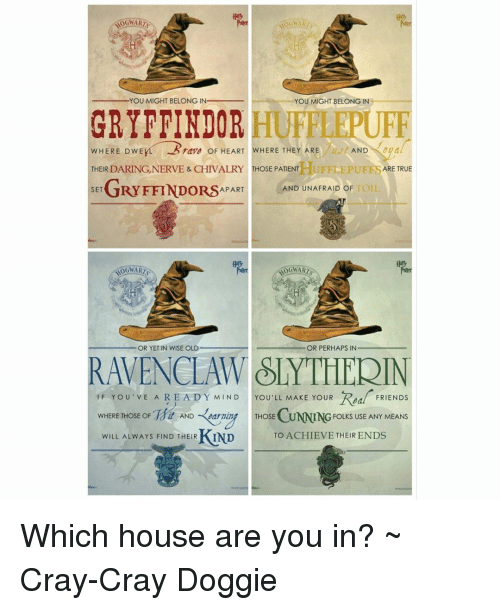 Which Hogwarts How Do You Belong To: YOU MIGHT BELONG IN YOU MIGHT BELONG IN GRYFFINDOR