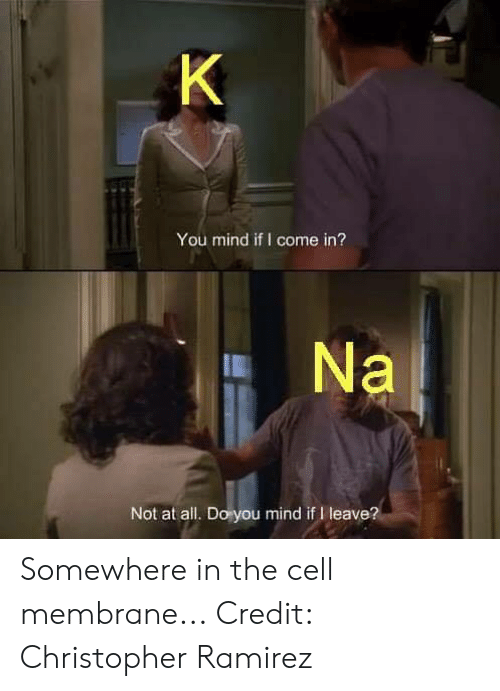 Memes, Mind, and 🤖: You mind if I come in?  Not at all. Do you mind if I leave? Somewhere in the cell membrane...  Credit: Christopher Ramirez