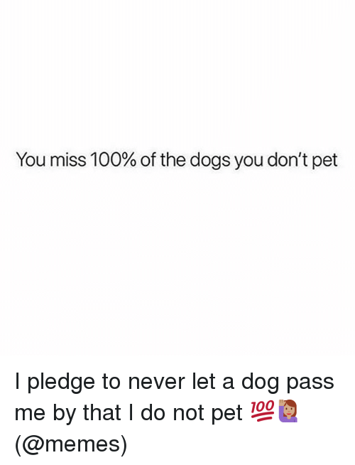 Anaconda, Dogs, and Memes: You miss 100% of the dogs you don't pet I pledge to never let a dog pass me by that I do not pet 💯🙋🏽♀️(@memes)