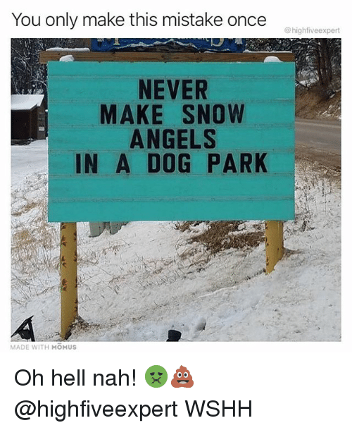Memes, Wshh, and Angels: You only make this mistake once  @highfiveexpert  NEVER  MAKE SNOW  ANGELS  IN A D0G PARK  MADE WITH MOMUS Oh hell nah! 🤢💩 @highfiveexpert WSHH