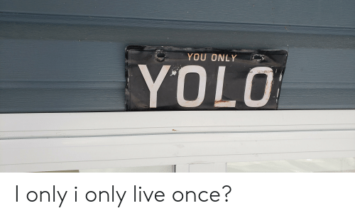 Yolo, Live, and Once: YOU ONLY  YOLO I only i only live once?