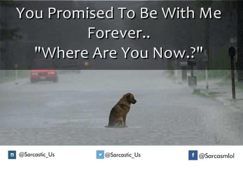 """Forever, You, and Now: You Promised To Be  With Me  Forever..  """"Where Are You Now.?""""  If @Sarcastic Us  @Sarcastic Us  @Sarcasmlol"""