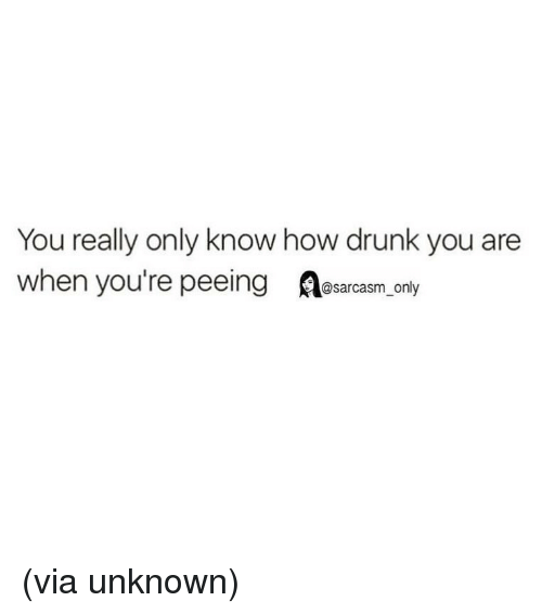 Drunk, Funny, and Memes: You really only know how drunk you are  when you're peeing esarcasm Orly (via unknown)