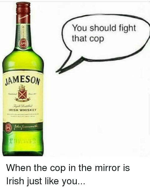 Irish, Memes, and Mirror: You should fight  that cop  JAMESON  IRISH WHISKEY When the cop in the mirror is Irish just like you...