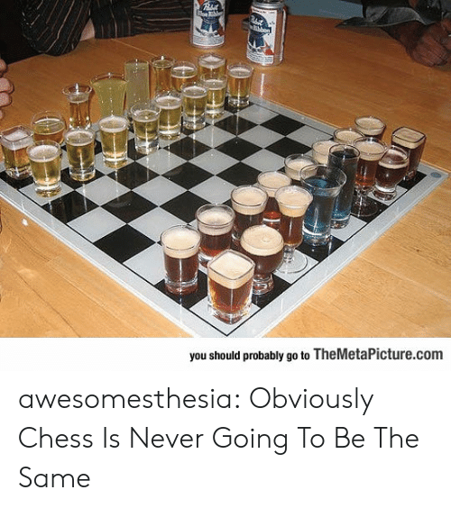 Tumblr, Blog, and Chess: you should probably go to TheMetaPicture.com awesomesthesia:  Obviously Chess Is Never Going To Be The Same