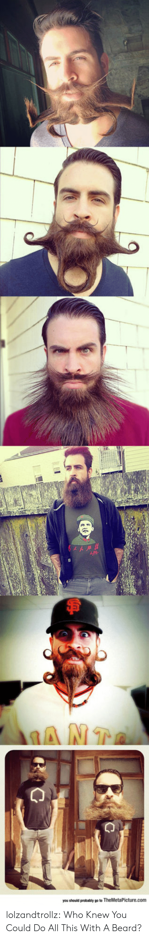 Beard, Tumblr, and Blog: you should probably go to TheMetaPicture.com lolzandtrollz:  Who Knew You Could Do All This With A Beard?