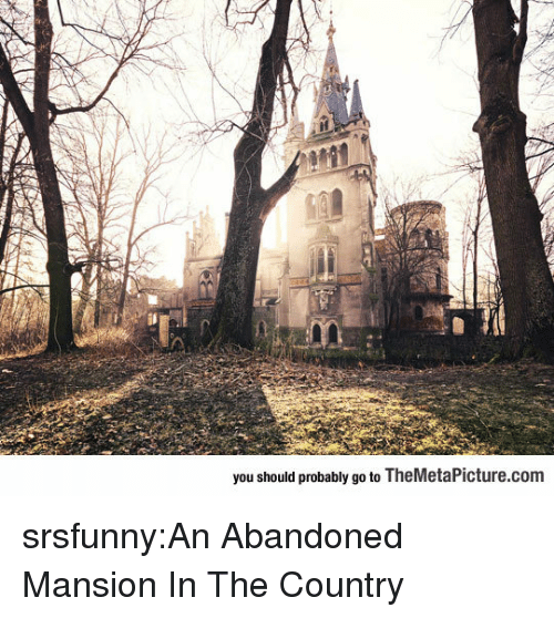 Tumblr, Blog, and Http: you should probably go to TheMetaPicture.com srsfunny:An Abandoned Mansion In The Country