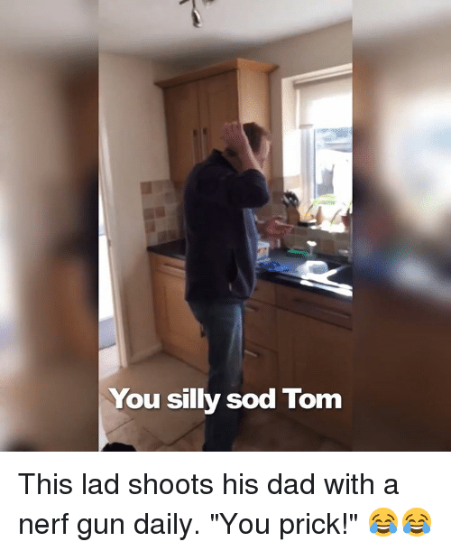 "Dank, Guns, and Toms: You silly sod Tom This lad shoots his dad with a nerf gun daily. ""You prick!"" 😂😂"