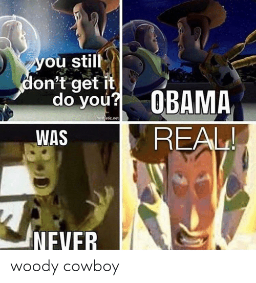 You Still Don't Get It Do You? OBAMA REAL! Medaticnet WAS