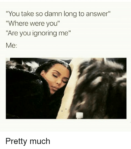 "Memes, 🤖, and Answers: ""You take so damn long to answer""  ""Where were you""  ""Are you ignoring me""  Me Pretty much"