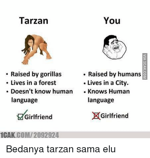 Memes, Tarzan, and Girlfriend: You  Tarzan  Raised by gorillas  Raised by humans  Lives in a forest  Lives in a City.  Doesn't know human  Knows Human  language  language  X Girlfriend  Girlfriend  COM 2092924  1CAK. Bedanya tarzan sama elu