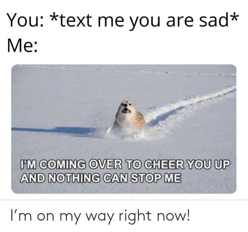 Text, Sad, and On My Way: You: *text me you are sad*  Me:  IM COMING OVER TO CHEER YOU UP  AND NOTHING CAN STOP ME I'm on my way right now!