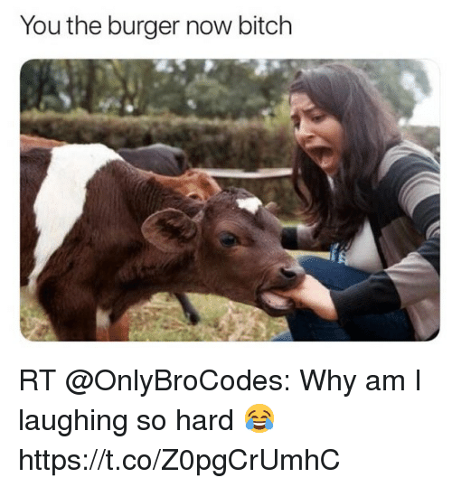 Bitch, Memes, and 🤖: You the burger now bitch RT @OnlyBroCodes: Why am I laughing so hard 😂 https://t.co/Z0pgCrUmhC