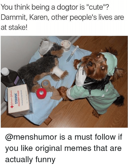 Girl Memes Karen And Stake You Think Being A Dogtor Is Cute