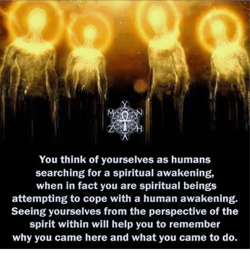 You Think of Yourselves as Humans Searching for a Spiritual