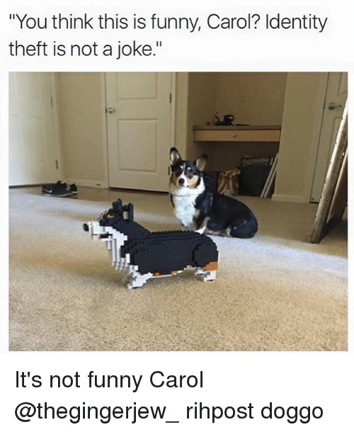"Funny, Memes, and 🤖: ""You think this is funny, Carol? Identity  theft is not a joke."" It's not funny Carol @thegingerjew_ rihpost doggo"