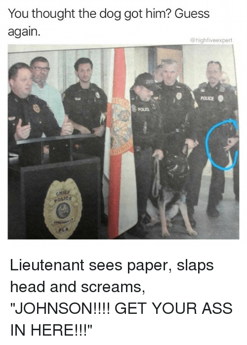 "Ass, Head, and Memes: You thought the dog got him? Guess  again.  highfiveexpert  POLICE  CHI  OLICE Lieutenant sees paper, slaps head and screams, ""JOHNSON!!!! GET YOUR ASS IN HERE!!!"""