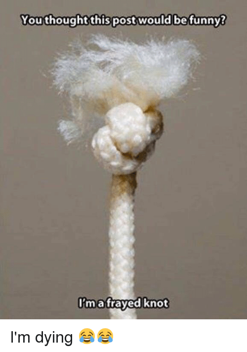 Memes, 🤖, and Fray: You thought this post would be funny?  I'm a frayed knot I'm dying 😂😂