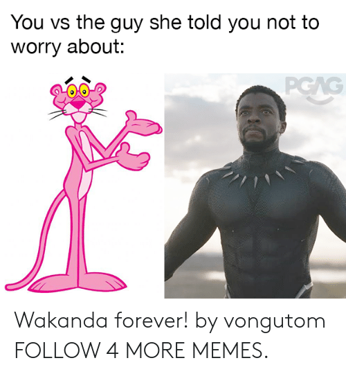 Dank, Memes, and Reddit: You vs the guy she told you not to  worry about:  PGAG Wakanda forever! by vongutom FOLLOW 4 MORE MEMES.