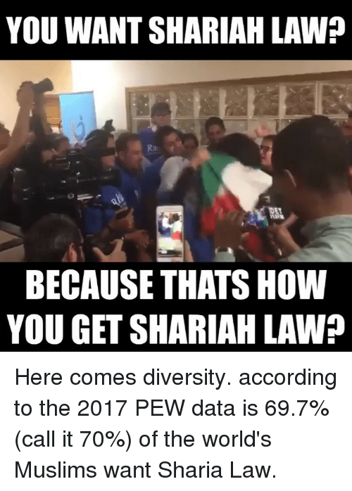 Memes, Diversity, and According: YOU WANT SHARIAH LAW?  BECAUSE THATS HOW  YOU GET SHARIAH LAW? Here comes diversity. according to the 2017 PEW data is 69.7% (call it 70%) of the world's Muslims want Sharia Law.