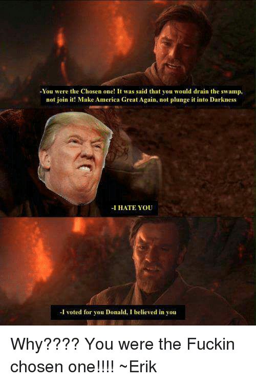-You Were the Chosen One! It Was Said That You Would Drain ...