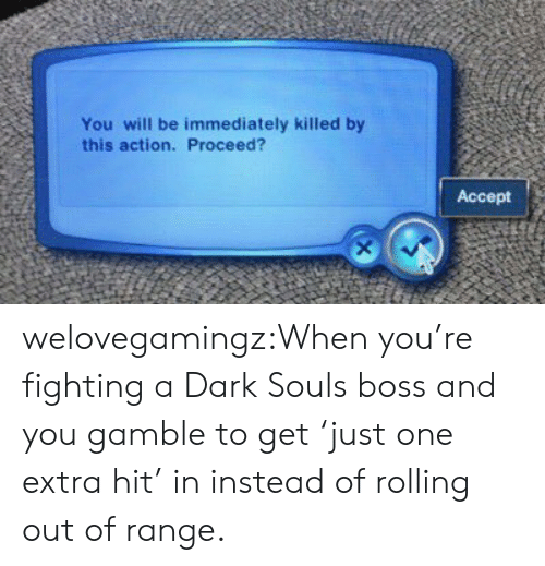 Tumblr, Blog, and Dark Souls: You will be immediately killed by  this action. Proceed?  Accept welovegamingz:When you're fighting a Dark Souls boss and you gamble to get 'just one extra hit' in instead of rolling out of range.