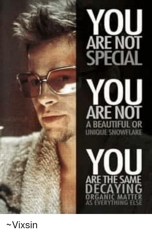 Beautiful, Memes, and 🤖: YOU  You  6  ARE NOT  SPECIAL  ARE NOT  A BEAUTIFUL OR  UNIQUE SNOWFLAKE  YOU  ARE THE SAME  DECAYING  ORGANIC MATTER  S EVERYTHING  ELS ~Vixsin