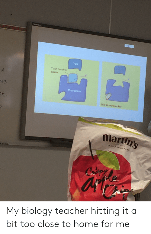 Crush, Teacher, and Home: You  Your crush's  crush  es  Your crosh  The Homewrecker  martin's My biology teacher hitting it a bit too close to home for me