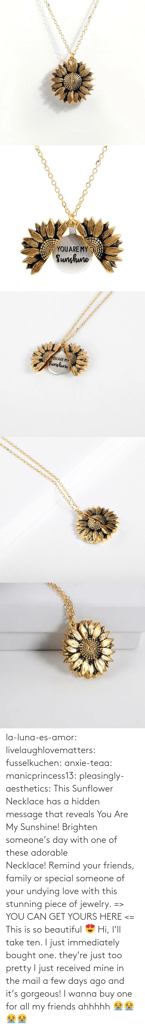Beautiful, Family, and Friends: YOUARE MY  Sunhuno   YOUARE MY  Sunghune la-luna-es-amor:  livelaughlovematters: fusselkuchen:  anxie-teaa:   manicprincess13:   pleasingly-aesthetics:  This Sunflower Necklace has a hidden message that reveals You Are My Sunshine! Brighten someone's day with one of these adorable Necklace!Remind your friends, family or special someone of your undying love with this stunning piece of jewelry. => YOU CAN GET YOURS HERE <=   This is so beautiful 😍    Hi, I'll take ten.    I just immediately bought one. they're just too pretty   I just received mine in the mail a few days ago and it's gorgeous!   I wanna buy one for all my friends ahhhhh 😭😭😭😭