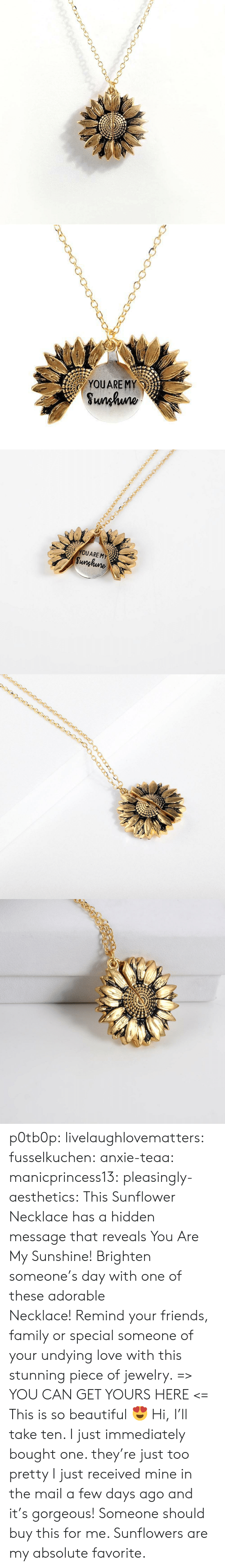 Beautiful, Family, and Friends: YOUARE MY  Sunhuno   YOUARE MY  Sunghune p0tb0p:  livelaughlovematters: fusselkuchen:  anxie-teaa:   manicprincess13:   pleasingly-aesthetics:  This Sunflower Necklace has a hidden message that reveals You Are My Sunshine! Brighten someone's day with one of these adorable Necklace! Remind your friends, family or special someone of your undying love with this stunning piece of jewelry. => YOU CAN GET YOURS HERE <=   This is so beautiful 😍    Hi, I'll take ten.    I just immediately bought one. they're just too pretty   I just received mine in the mail a few days ago and it's gorgeous!   Someone should buy this for me. Sunflowers are my absolute favorite.