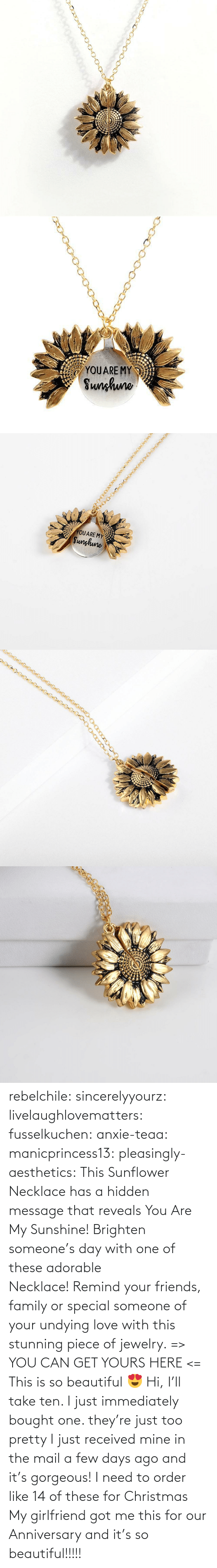 Beautiful, Christmas, and Family: YOUARE MY  Sunhuno   YOUARE MY  Sunghune rebelchile:  sincerelyyourz:  livelaughlovematters:  fusselkuchen:  anxie-teaa:   manicprincess13:   pleasingly-aesthetics:  This Sunflower Necklace has a hidden message that reveals You Are My Sunshine! Brighten someone's day with one of these adorable Necklace!Remind your friends, family or special someone of your undying love with this stunning piece of jewelry. => YOU CAN GET YOURS HERE <=   This is so beautiful 😍    Hi, I'll take ten.    I just immediately bought one. they're just too pretty   I just received mine in the mail a few days ago and it's gorgeous!   I need to order like 14 of these for Christmas    My girlfriend got me this for our Anniversary and it's so beautiful!!!!!