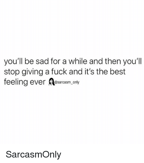Funny, Memes, and Best: you'll be sad for a while and then you'll  stop giving a fuck and it's the best  feeling ever esarcasm only SarcasmOnly