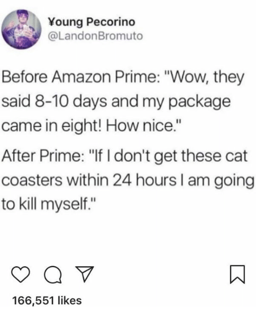 """Amazon, Amazon Prime, and Wow: Young Pecorino  @LandonBromuto  Before Amazon Prime: """"Wow, they  said 8-10 days and my package  came in eight! How nice.""""  After Prime: """"If I don't get these cat  coasters within 24 hours I am going  to kill myself.""""  166,551 likes"""