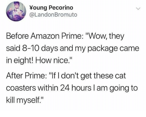"""Amazon, Amazon Prime, and Wow: Young Pecorino  @LandonBromuto  Before Amazon Prime: """"Wow, they  said 8-10 days and my package came  in eight! How nice.""""  After Prime: """"If I don't get these cat  coasters within 24 hours l am going to  kill myself."""""""